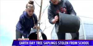 Two students planting trees, heading underneath reads, Earth Day Tree Saplings Stolen